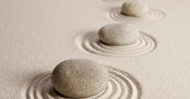 Managing a path to wisdom